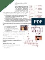 Tema5 genetica