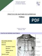 anatomiadesuperficietraxcomppptshare-110417000014-phpapp01.ppt