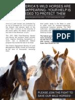 WHP-Brochure14 092015 (5)