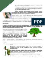 Arbol, Ave y Flor Nacional de Los paises de Centroamerica
