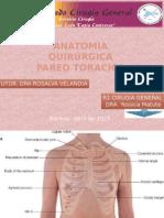 Anatomia Quirurgica