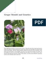Chapter 6 - Gregor Mendel and Genetics