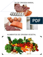 Origem Alimentos
