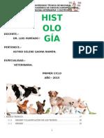 portafolio general histologia