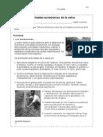 1408743692.Ficha_Actividades_Economicas_de_la_selva_sesion1_semana5_PS5.doc