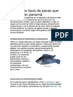 Diferentes Tipos de Peces Que Se Crían en Panamá