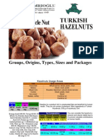Turkish Hazelnuts Product Information, Group, Type, Size Packages