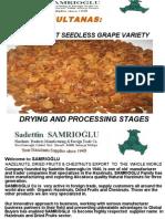 Turkish Sultanas - SAMRIOGLU Hazelnuts and Dried Fruits Export