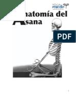 Anatomía del Asana