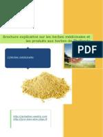 brochure herbes thaies