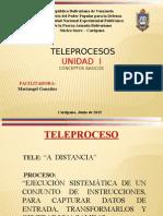 Unidad 1 tele proceso