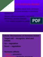 Mechanism Hormone Disease (Lec 3)