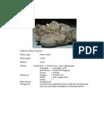 Deskripsi Batuan Sedimen-reno