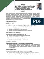 Curriculum Vitae Sebastian Rivera 2015-1