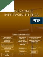 Teisėsaugos Institucijų Sistema