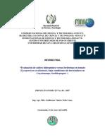 Evaluación de Cultivo Hidropónico Versus Fertirriego en Tomate Bajo Condiciones de Invernadero