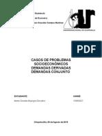 5 CASOS DE PROBLEMAS SOCIOECONOMICOS CON SUS INDICES Y CRITERIOS RURAL.docx