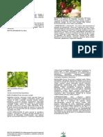 Album de Plantas Medicinales 2015