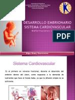 Embriologia y Patologias Congenitas (1)