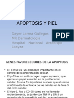 apoptosis.pptx