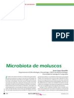 Microbiota Moluscos ActSEM-50