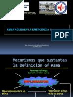 3- Asma Agudo en La Emergencia