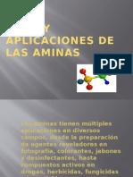 Usos y Aplicaciones de Las Aminas