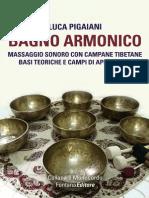 Bagno Armonico - Luca pigaiani - Estratto