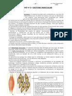 Sistema muscular.doc