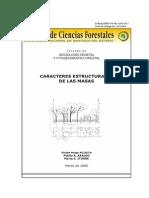 Caracteres Estructurales