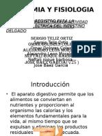 Sistema de Medicion Del Intestino Delgado