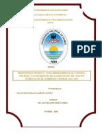 Tesis Presupuesto Publico Valladares
