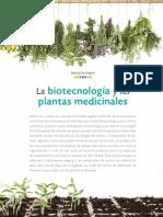 Domínguez - La Biotecnología y Las Plantas Medicinales