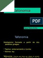 52730270-2-Tafonomia
