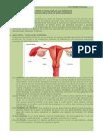 Anatomía y Fisiología de La Reproduccion