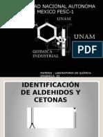 Identificacion de Aldehidos y Cetonas