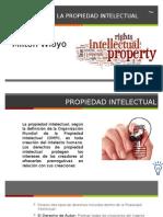 Protecion Propiedad Intelectual