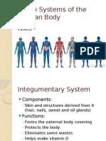 organ systems presentation