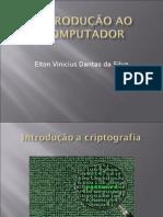 Elton Vinicius Dantas Da Silva 2