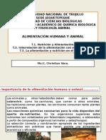 SEMANsdsfdA 1