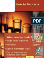Introduction to Bacteria 02