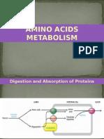 Amino Acids Metab.