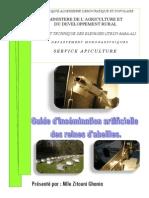 Guide d'Insémination Artificielle des reines d'abeilles Itelv - Algérie