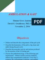 Gait & Ambulation 2004