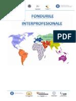 Traducere prezentare Fonduri specifice