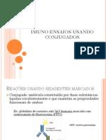 3- Aula IMUNOENSAIO USANDO CONJUGADOS.pdf