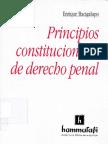 bacigalupo, enrique - principios constitucionales de dchp penal.pdf
