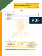 SGI-P-GE-116 Programa de Liderazgo Preventivo Rv 00.pdf