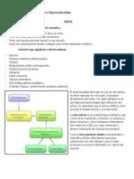 Antiasmáticos & Glucocorticoides