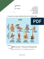 Trabajo Práctico Antropología - Profesor Daniel Fermanni